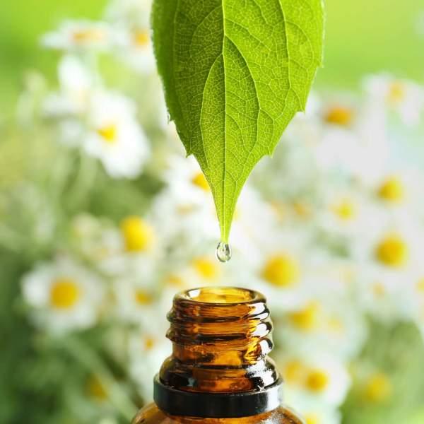 Webinar-huile-essentielle-apoticarius-5